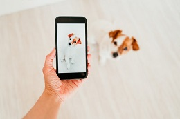 Post image for We print photos and documents from your phone!